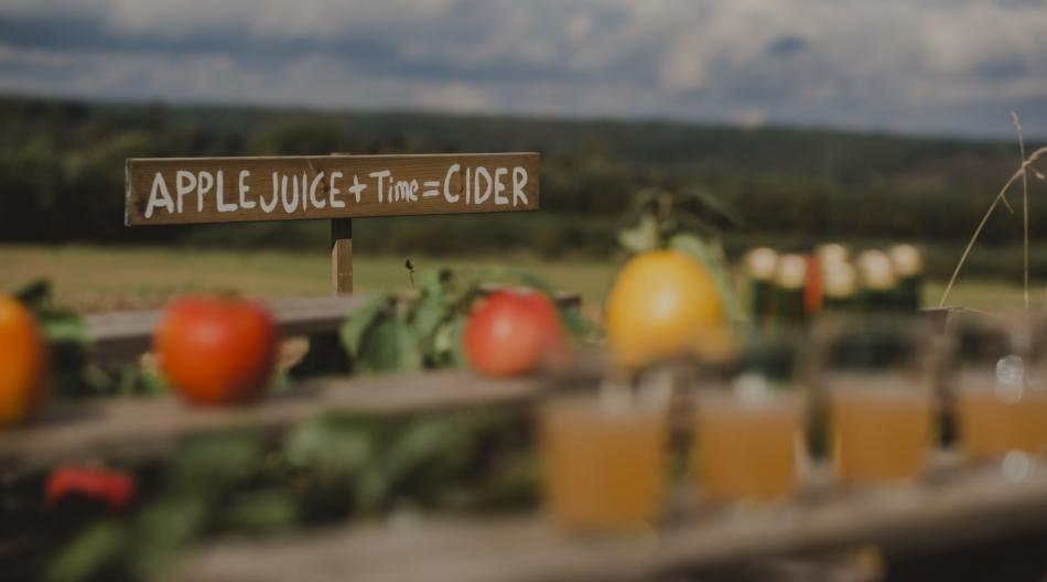 "Skylt på landsbygd med texten ""Apple juice + time = cider"""